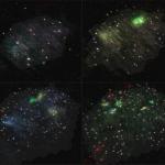 galaxies2